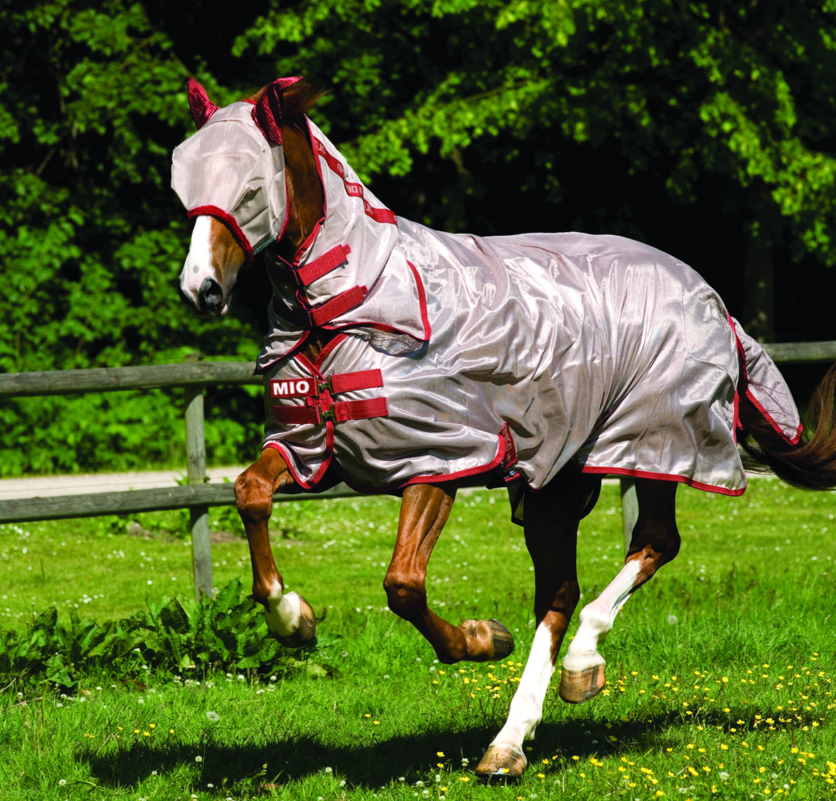 Horseware ponny & föl flugtäcke