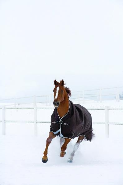 Horseware utetäcke Heavy 300-450 g