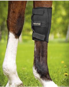 Knäskydd häst från Back on Track
