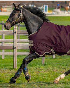 Amigo Hero Ripstop Lite/100G fra Horseware