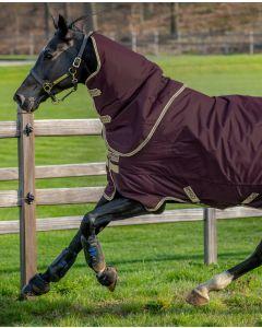 Amigo Hero Ripstop Plus/ 100G från Horseware