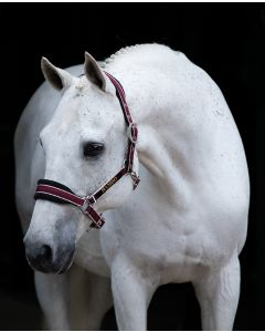Rambo Headcollar Black/Pomegranate & White