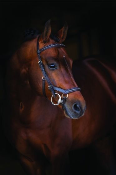 Rambo Micklem Deluxe Competition Bridle från Horseware.